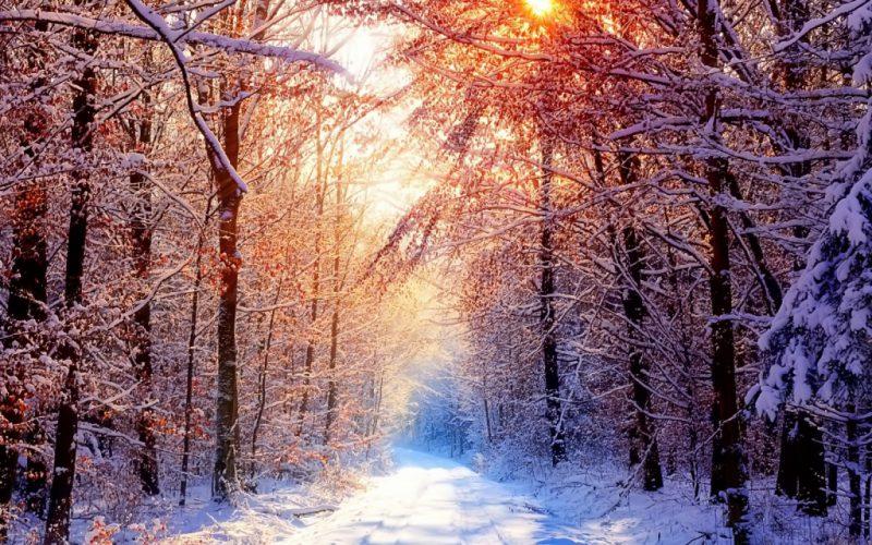 Menù Inverno  – Alla carta